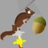 Go Squirrel Go!